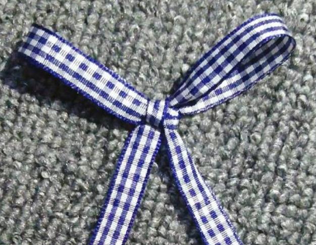 教大家几款蝴蝶结 简单又快又好看的蝴蝶结的打法快学起来