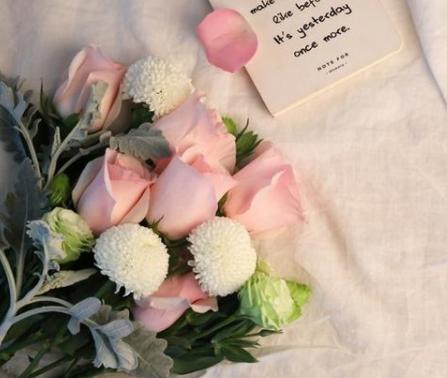 一天上百万支玫瑰被销毁是怎么回事?今年情人节花卉市场低迷